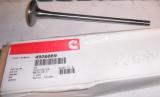 Клапан впускной Cummins M11, QSM11 4926069, 4955239, 3417778, 3080975, 3800636, 3804533