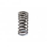 Пружина клапана впускного 6CT 5292625 / С3991085